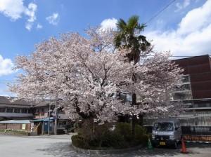 2014_04_05_191