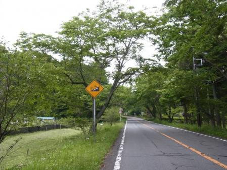2013_05_26_0158.jpg