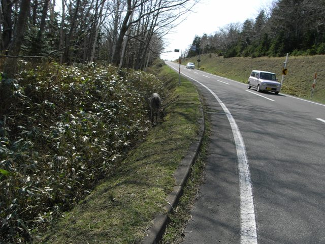 route_334_0536.JPG