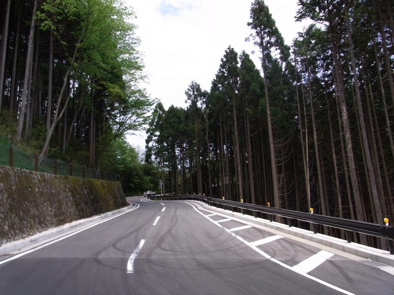 ashigara_pass.JPG