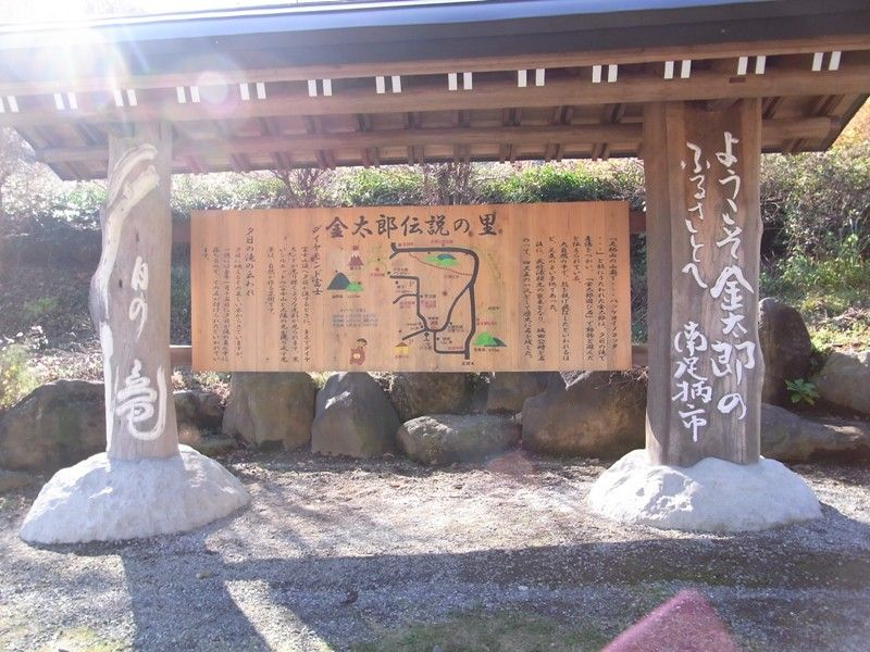 kintaro_0023.JPG