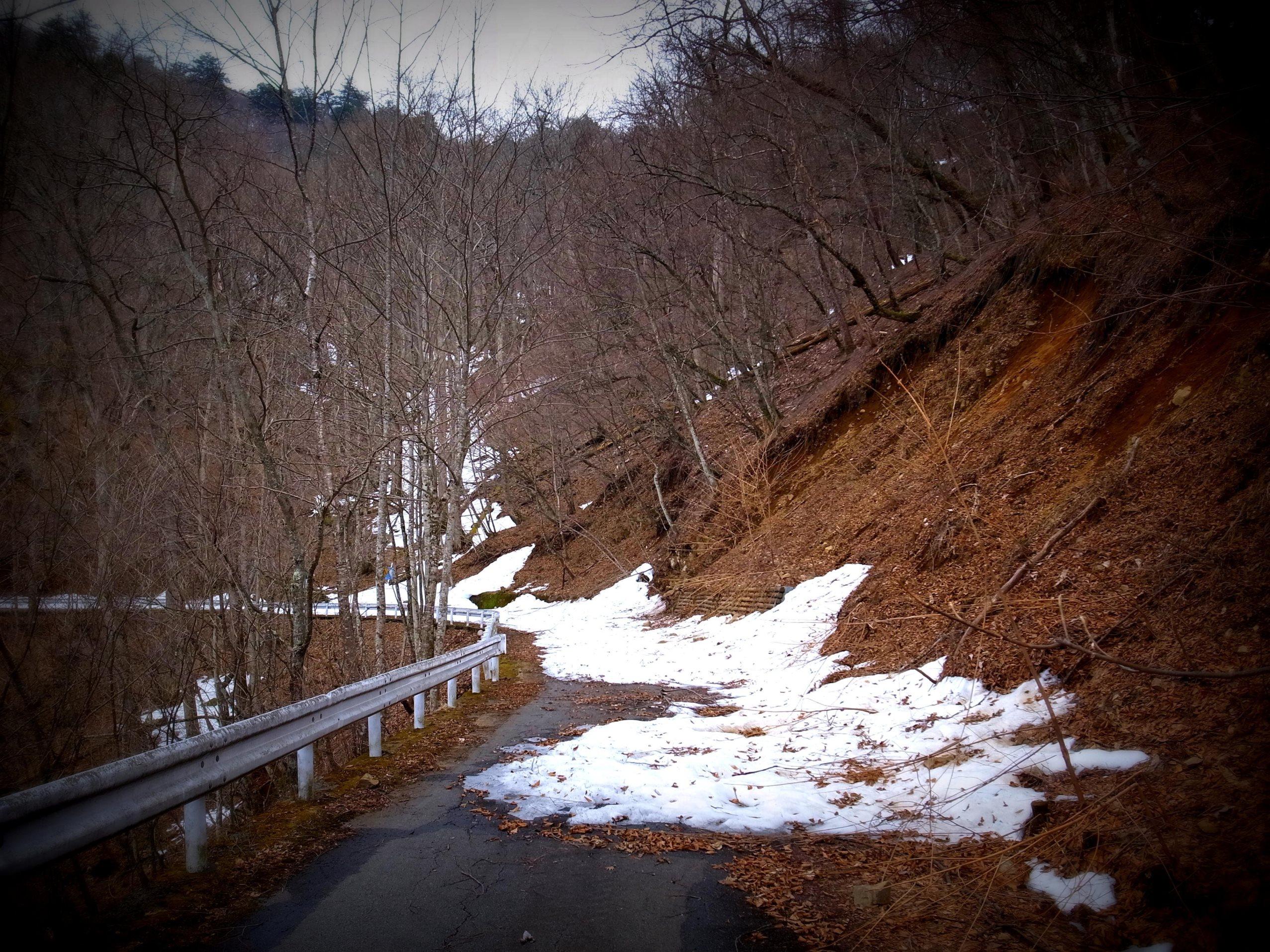 Devastated Road in Yamanashi Pref.